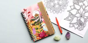 pliary planner and diary in one Australian made